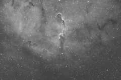 IC1394