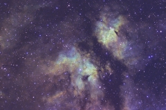 "IC1318 ""Butterfly"""